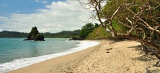 Sandy beach in costa rica